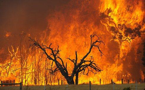 australia-wildfires-001